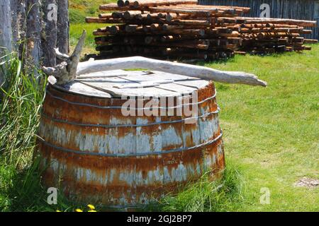 An old wooden barrel upside down on the grass, with a stick across the bottom. A pile of logs stacked in the background.