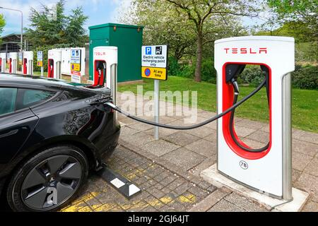 Climate change friendly electric cars charging at row of Tesla car parking bays at Welcome Break facility M42 motorway service station Birmingham UK