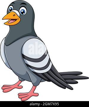 Cute Pigeon bird cartoon vector illustration