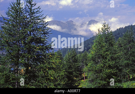 italy italian alps chisone valley close to french border near briancon and sestriere - Stock Photo