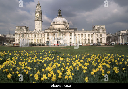 Daffodils in flower in front of the Civic Centre - Stock Photo