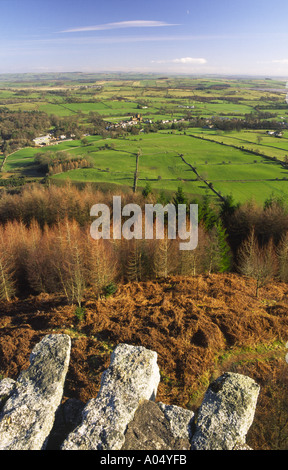 Aerial view of agricultural landscape from Waterloo Monument - Stock Photo