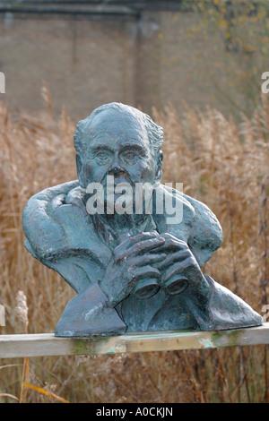 Sculpture of Sir Peter Scott - Stock Photo