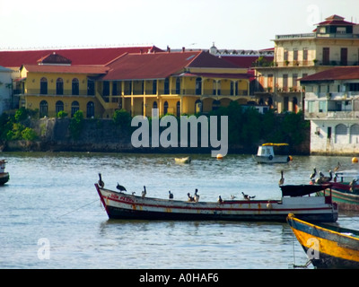 Pelicans resting on fishing boats early in the morning. El Terraplén, Republic of Panama, Old Quarter, Panama City - Stock Photo