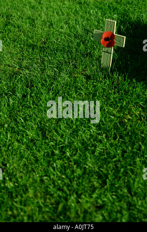 single poppy on a simple wooden cross stuck in the grass on Remembrance day Royal Tunbridge Wells Kent  - Stock Photo