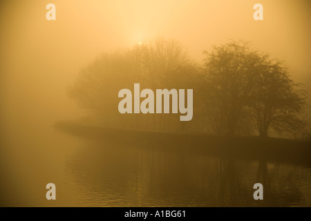 Yarrow Valley Park in winter with morning mist Lancs UK - Stock Photo