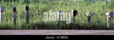 Row of rural mailbox with ducks on it in field of roadside grass Ontario Canada - Stock Photo