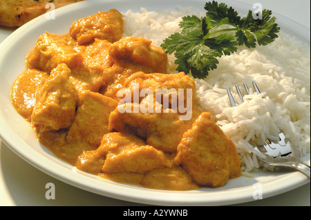 chicken korma - Stock Photo