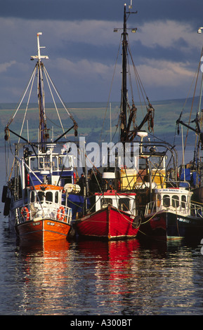 Fishing trawlers in Greencastle harbour. Inishowen, County Donegal, Ireland. - Stock Photo