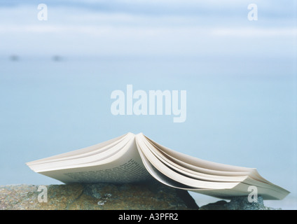 Open book laying face down on rock - Stock Photo