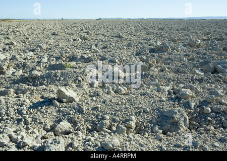 Dry dirt of empty tilled agricultural field - Stock Photo