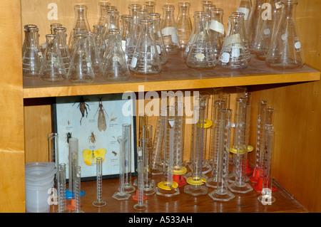 Glassware flasks beakers cylinders on shelves in school biology classroom - Stock Photo