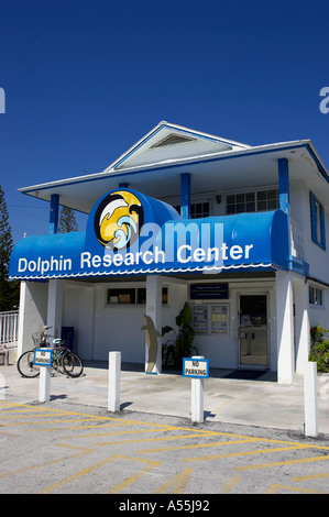 Dolphin research center grassy key florida keys home for sick and injured dolphins usa - Stock Photo