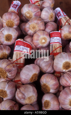 Bunches of rose garlic for sale in France - Stock Photo