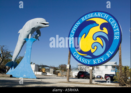 Dolphin Research Center Grassy Key Florida - Stock Photo