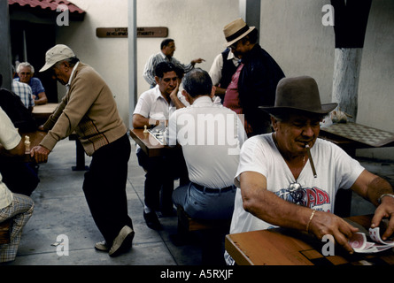 CUBAN EXILE COMMUNITY MIAMI OLDER MEMBERS OF THE COMMUNITY IN DOMINO PARK MEN IN HATS SMOKING CIGARS PLAY CARDS,CHESS - Stock Photo