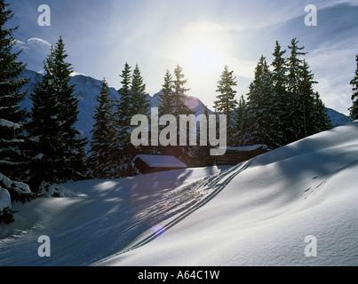 tracks of skiers in powdersnow near village of murren region of bernese highland swiss alpes switzerland - Stock Photo