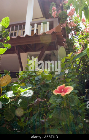 Balcony (of a hotel) with tropical flowers - Stock Photo