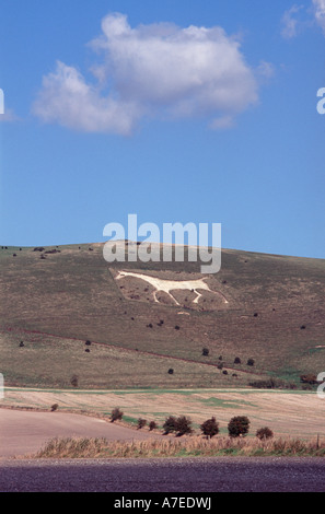 The White Horse on Milk Hill, near Alton Barnes, Vale of Pewsey, Wiltshire, England - Stock Photo