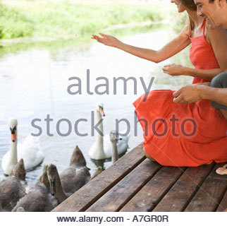 Young couple feeding swans - Stock Photo