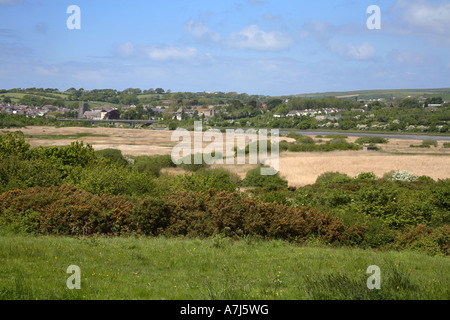 Welsh Wildlife Centre Teifi Marshes nature reserve Wales - Stock Photo
