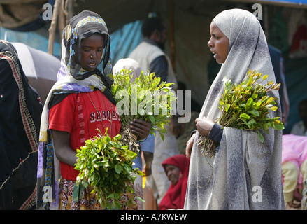 Ethiopia - women selling Chat at the Chat market in Aweday near Harar - Stock Photo