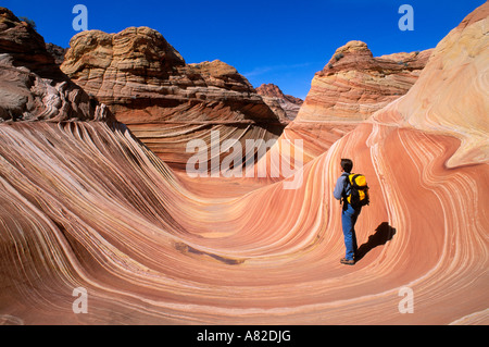 Hiker on the swirling sandstone at The Wave in the Coyote Buttes area Paria Canyon Vermilion Cliffs Wilderness Arizona/Utah - Stock Photo