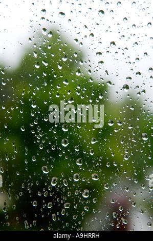 Raindrops on the window pane - Stock Photo