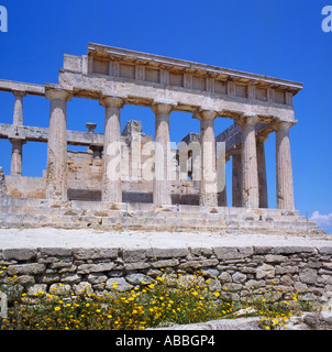 Doric style ruins and pillars at The Temple of Aphaia with yellow flowers growing in foreground Aegina Island Greek - Stock Photo