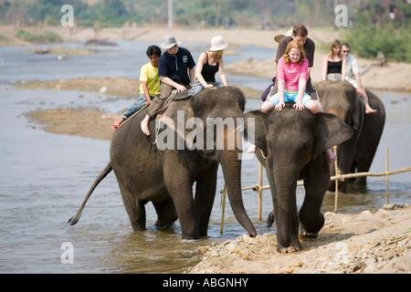 Elephant trek in river near Pai north Thailand - Stock Photo