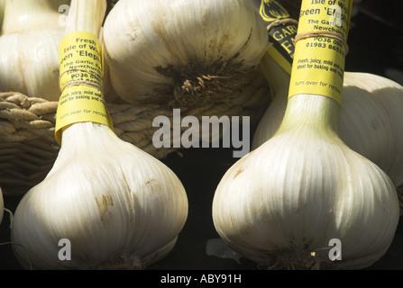 Isle of Wight grown elephant garlic at Winchester Farmers Market Hampshire UK - Stock Photo