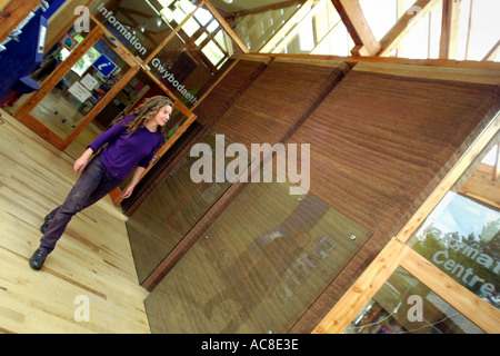 Visitor information centre built with rammed earth walls at Centre for Alternative Technology Machynlleth Powys - Stock Photo