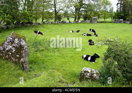 Grange Stone Circle Lough Gur Stone Age Centre Bruff Co Limerick Ireland - Stock Photo
