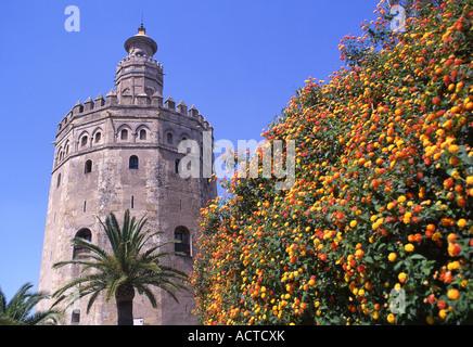 Torre del Oro Seville Andalucia Spain - Stock Photo