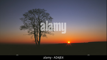 South Downs, Proposed National Park, Amberley, West Sussex, England, UK, GB. - Stock Photo