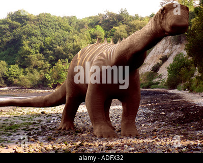 diplodocus or brontosaurus one of the sauropod family of dinosaurs 3d illustration - Stock Photo