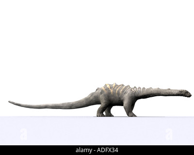 diplodocus or brontosaurus one of the sauropod family of dinosaurs 3d illustration Silhouette - Stock Photo