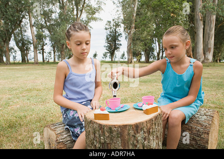 Girls having a tea party in field - Stock Photo