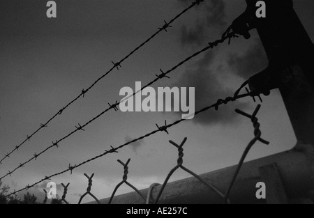barbed wire and chain link fence silhouetted against sky - Stock Photo