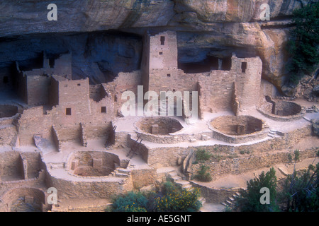 Cliff Palace ancient stone ruins and kivas in village built into cliff by Anasazi Ancestral Puebloans Indians - Stock Photo