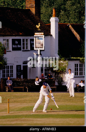 Village cricket at The Barley Mow, Tilford Surrey England HOMER SYKES - Stock Photo