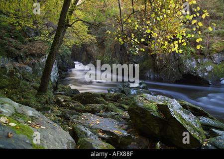 'Fairy Glen' 'River Llugwy' Betws Y Coed Snowdonia Gwynedd Wales - Stock Photo