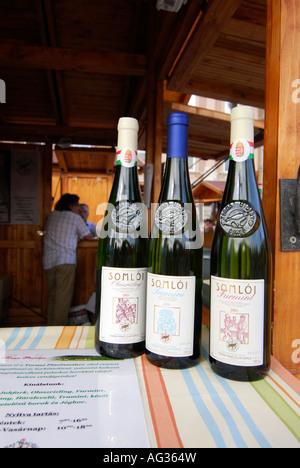 Bottles of Wine Gastronomy Festival Budapest Hungary Europe - Stock Photo