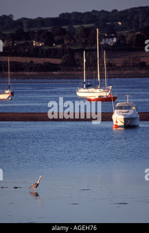 View across Exe estuary from Starcross to Exmouth with Heron in foreground - Stock Photo