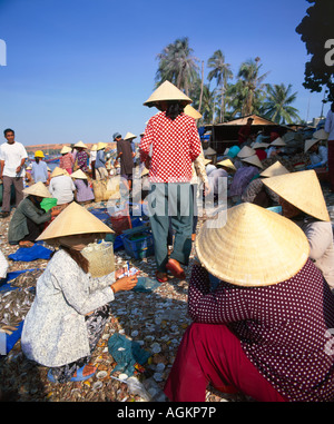 Fishing village people collecting the morning catch from fishing boat fleet Mui Ne south central coast Vietnam Indochina - Stock Photo