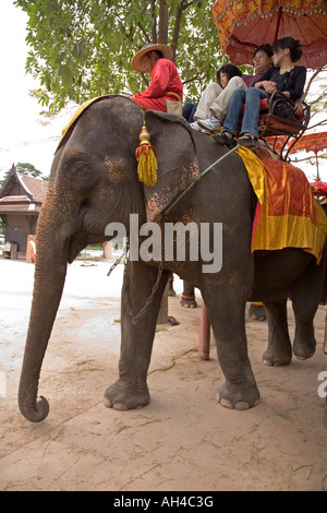 Elephant gives rides to tourists in Ayutthaya Thailand - Stock Photo