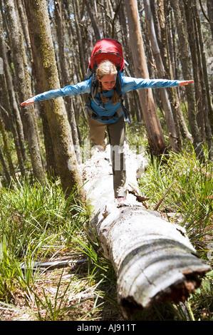Hiker balancing on fallen tree. - Stock Photo