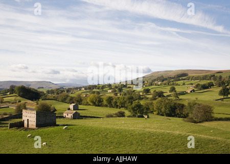 Typical rural farmland landscape in Wensleydale valley in Yorkshire Dales National Park Wensleydale North Yorkshire - Stock Photo