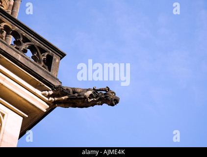 Gargoyle, St Vitus Cathedral, Prague, Czech Republic, Europe - Stock Photo