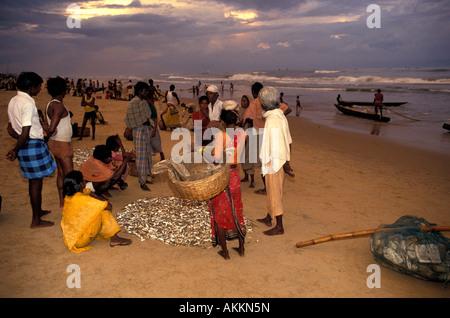 India, Orissa, Puri, beach on Indian Ocean, fishermen - Stock Photo